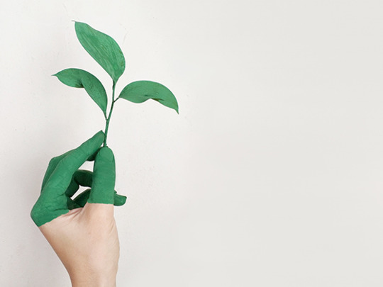 Hoe help jij het klimaat een handje in jouw bedrijf?